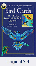 Bird-Cards_The-Healing-Power-of-the-Bird-Kingdom-Original