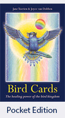 Bird Cards  - The Healing Power of the Bird Kingdom