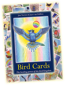 Discover the remarkable healing power of birds, and how they can support us in our daily lives, with this powerful deck.